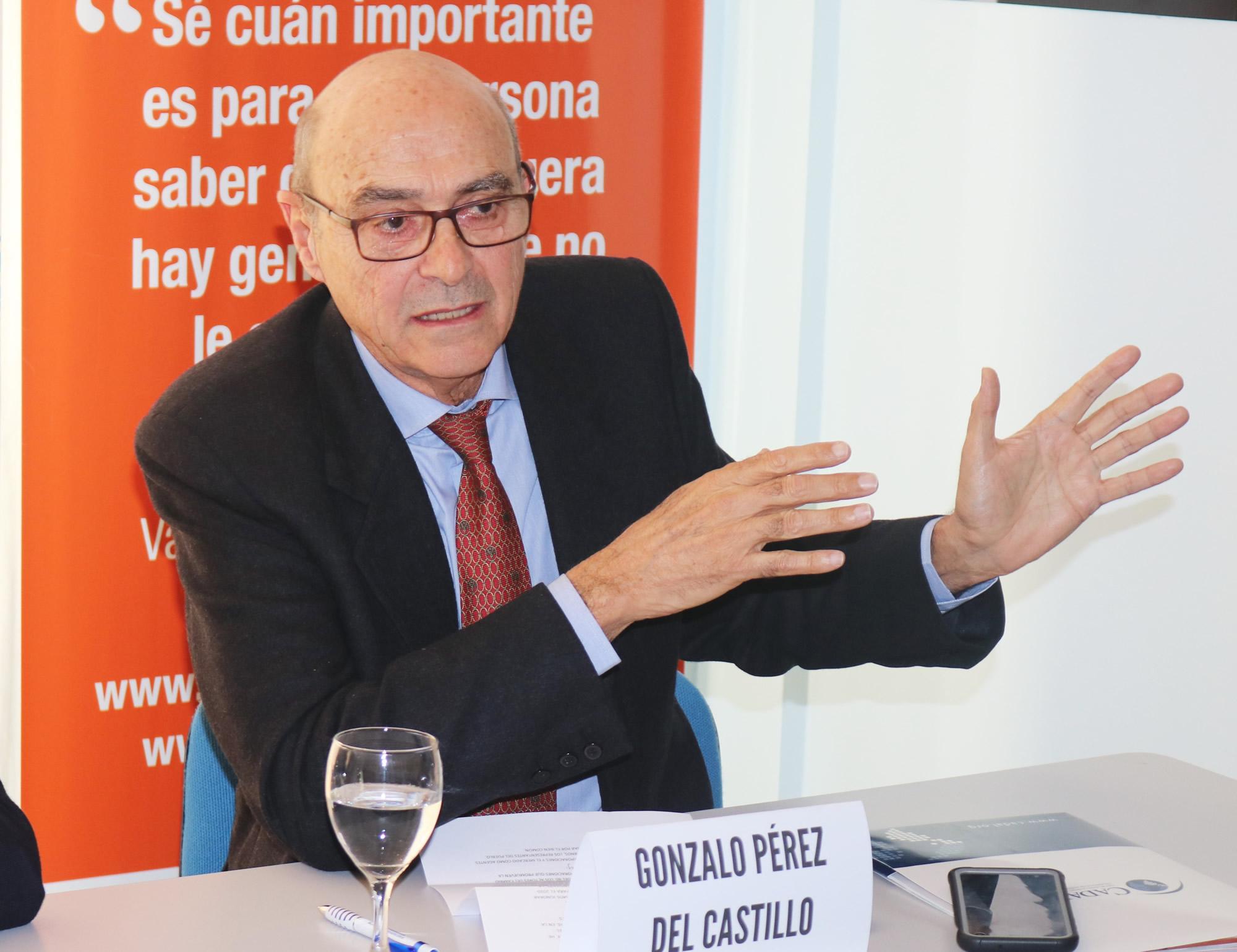 Gonzalo Perez del Castillo