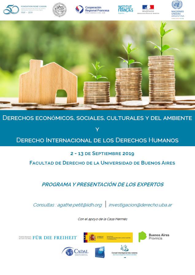 Derechos económicos, sociales, culturales y del ambiente y Derecho Internacional de los Derechos Humanos