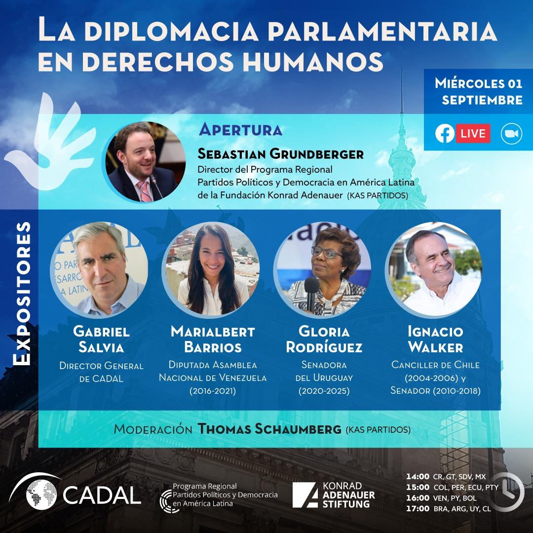 La diplomacia parlamentaria en derechos humanos