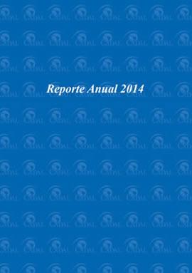 Reporte Anual 2014